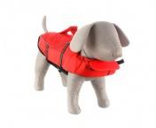 Plavání se psem