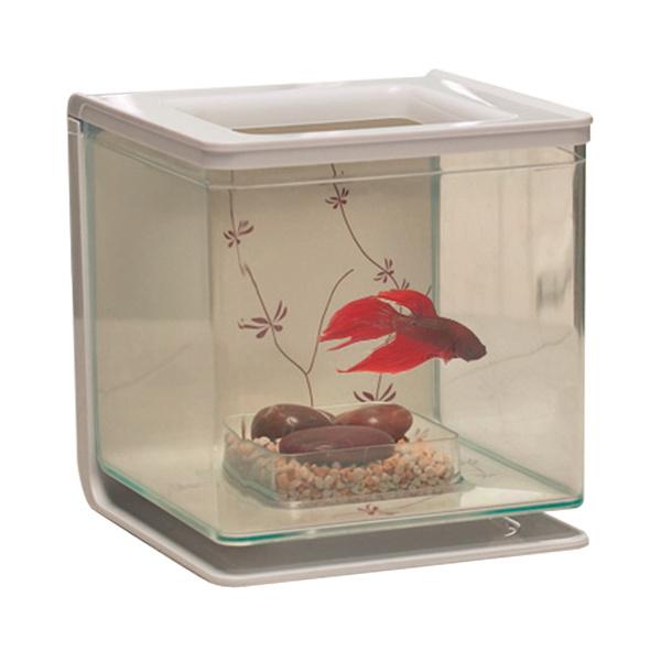 Akvárium marina betta kit contemporary 2l