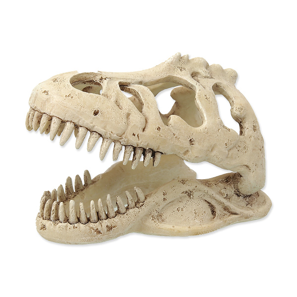 Repti planet dekorace t-rex lebka 13,3x8,5x9cm