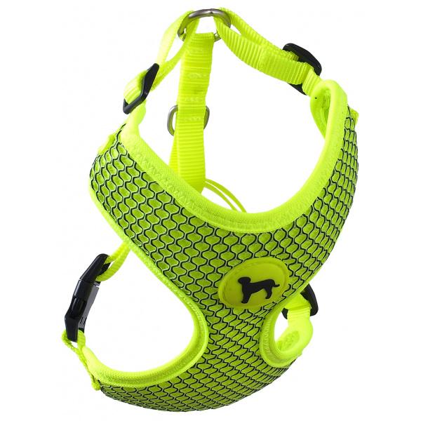 Postroj Active Dog Mellow S limetka 1,5x35-47cm