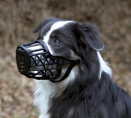 Náhubek pro psy trixie plastový xl černá 35cm