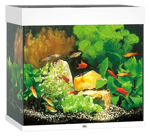 Akvárium set JUWEL Lido LED 120 bílá Juwel