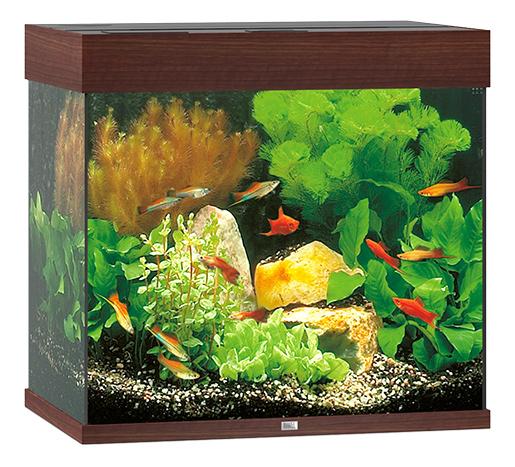 Juwel Akvárium set Lido LED 120 tm. hnědé Juwel