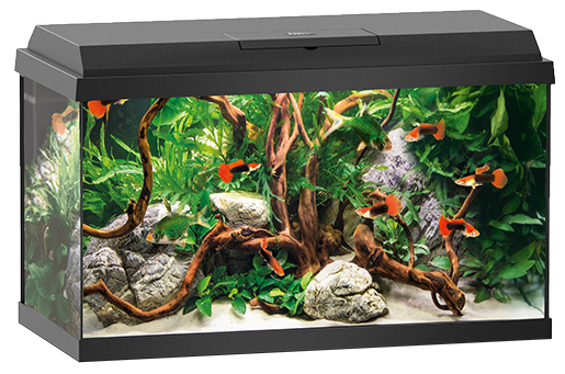 Akvárium set Juwel Primo LED 60 černé Juwel