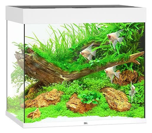 Juwel Akvárium set Lido LED 200 bílá 70x51x65cm 200l Juwel