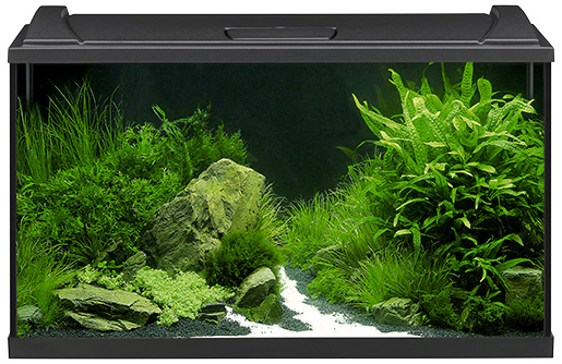 Akvárium set EHEIM Aquapro LED černý 126l, 82*50*37cm