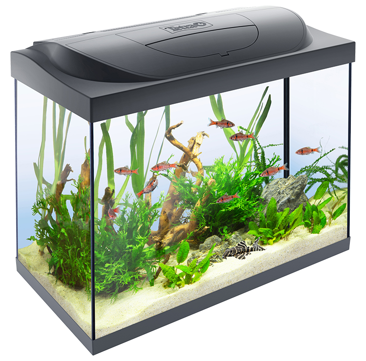 Akvárium set Tetra Starter Line LED 80l, 62,5*34*53,5cm