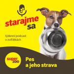 Nový díl podcastu: Pes a jeho strava title=