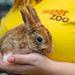 Prodej živých zvířat opět povolen title=