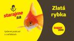 Zlaté rybky   Podcast Super zoo title=