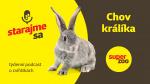 Chov králíků   Podcast Super zoo title=