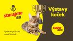 Výstavy koček   Podcast Super zoo title=