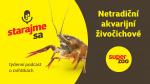 Netradiční akvarijní živočichové   Podcast Super zoo title=