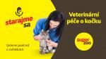 Veterinární péče o kočku | Podcast Super zoo title=