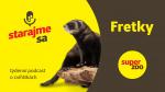 Fretky | Podcast Super zoo title=