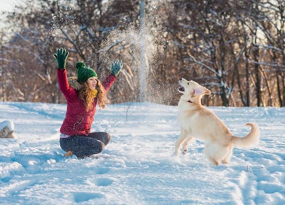 Péče o psa v zimě
