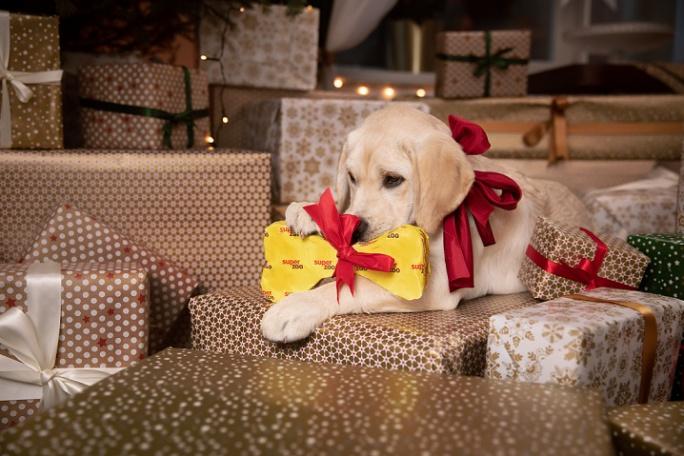 Tipy na vánoční dárky pro mazlíčky title=