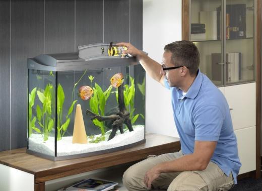 Krmení rybiček v době dovolené