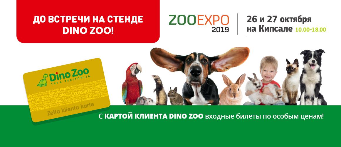 ZOO EXPO 2019!