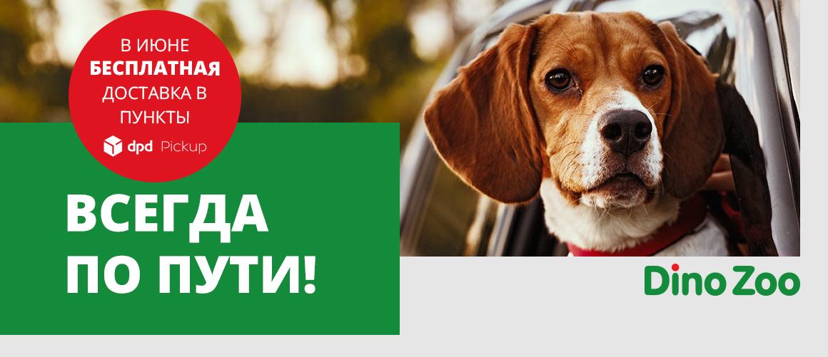 БЕСПЛАТНАЯ ДОСТАВКА DPD PICK UP!