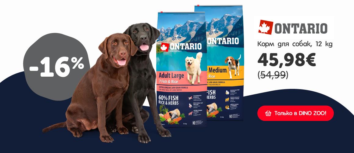 Brit Premium - Barība suņiem