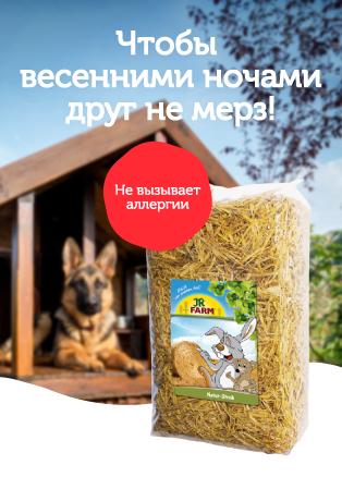 Salmi suņu būdai ru